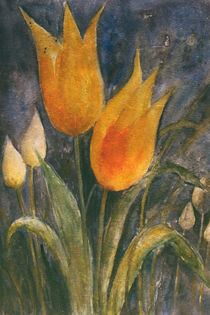 Yellow tulips - Gelbe Tulpen by Chris Berger