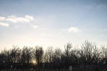 Sonnenuntergang von Petra Dreiling-Schewe