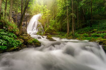 Gollinger Wasserfall von Reiko Sasse