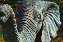 'Elefant' von Daniel Klein