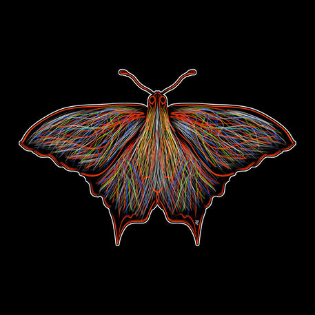 Butterfly-rdbble-postr-png