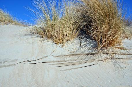 Dsc-0299-foehr-strand-duenen-munk
