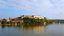 Wiev at Petrovaradin fortress near Novi Sad by ambasador