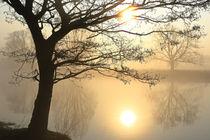 Bäume an beiden Ufern von Bernhard Kaiser