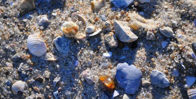 Dsc-0588-foehr-sand-foto-munk