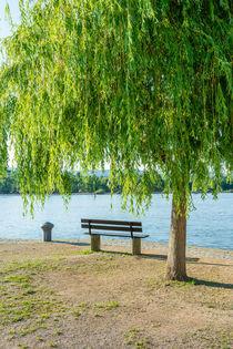 Entspannung am Rhein 76 by Erhard Hess
