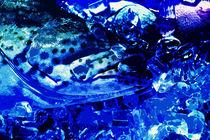 Fangfrisch auf Eis - blau by Hartmut Binder