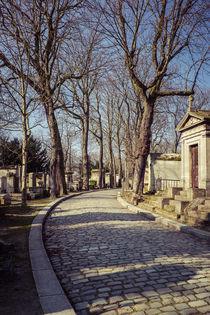Avenue von Jürgen Creutzburg