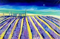 Lavendel in der Haute-Provence von Christian Seebauer