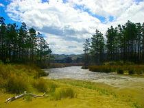 River in the nature von Martin Weber