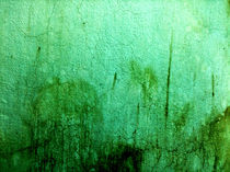 Greenwall – Jamur-Serie by Martin Weber