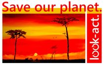 Safari: Sonnenuntergang in der Steppe Afrikas von Christian Seebauer