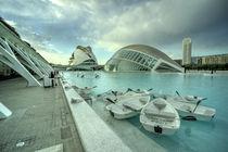 Valencia Rowing Boats  by Rob Hawkins