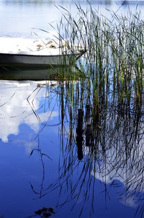 Frühling am See von Irmtraut Prien