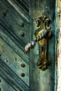 The door von salogwynpictureart