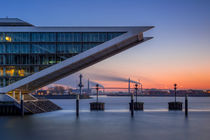 Top Of The Dock 91 by photobiahamburg