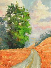 Eucalyptus Drive by Steven Guy Bilodeau