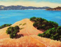 Angel Island Vista by Steven Guy Bilodeau