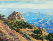 Tamalpais Vista by Steven Guy Bilodeau