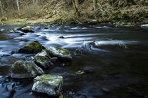 River flow in Harz mountains. von salogwynpictureart