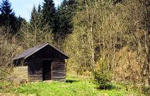 'Waldhütte.' von fischbeck