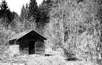 Waldhütte. by fischbeck
