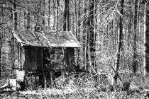 Verfallene Waldhütte. by fischbeck