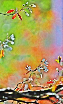 spring dance... 7 by loewenherz-artwork