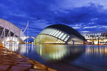 City of Arts and Sciences in Valencia by Tania Lerro