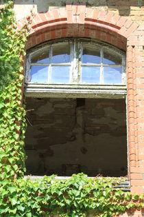 Abandoned Hospital von Bianca Baker