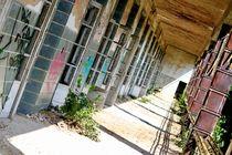 Abandoned Beelitz by Bianca Baker