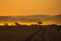 Abendstimmung in der Namib-Wüste by Stefan Schütter