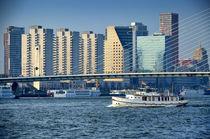 Rotterdam Centrum by Iris Heuer