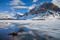 Frühling in den kanadischen Rocky Mountains von Stefan Schütter