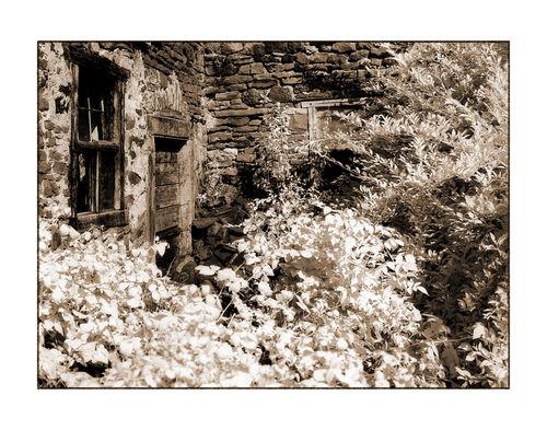 Bauernhaus-2-kopie
