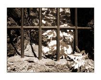 Gitter 1 von Theo Broere