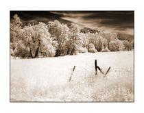 Im Ahrtal 1 by Theo Broere