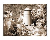 Kaffee von Theo Broere