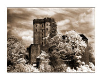 Kasselburg 1 by Theo Broere
