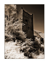 Oberburg Manderscheid,2 von Theo Broere