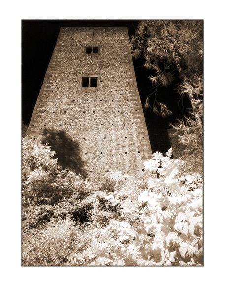 Schonecken-1-kopie