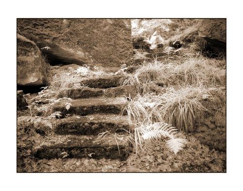 Stufen-3-kopie