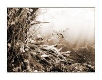 Totenmaar 4 von Theo Broere