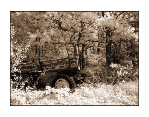 Wagen-3-kopie