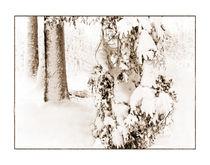Winter 1 von Theo Broere