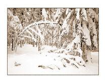 Winter 2 von Theo Broere