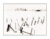 Winter 3 von Theo Broere