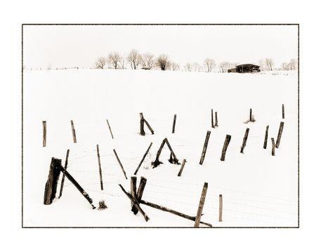Winter-3-kopie
