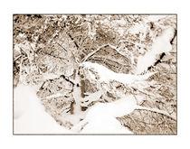 Winter 4 von Theo Broere
