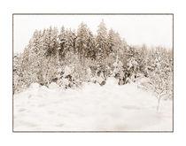 Winter 6 von Theo Broere